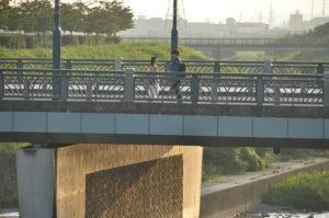 青木玄徳 かささぎ橋